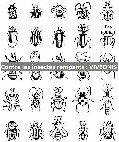 Pièges anti-insectes Rampants