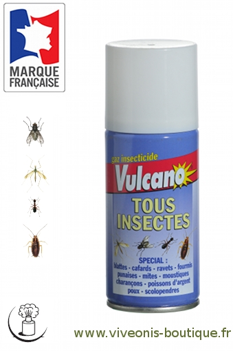 Insecticide Tous Insectes One Shot 150ml
