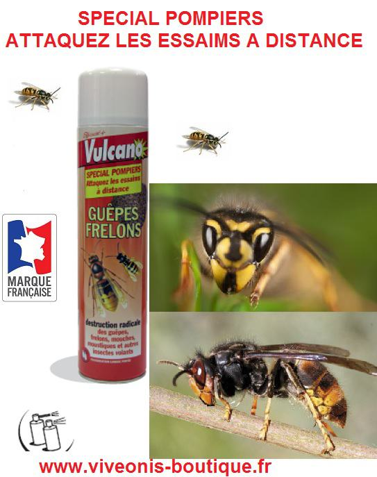 Produit Anti-Guepes aerosol Insecticide 600ml