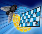 Destructeur Insectes de table Vectothor Sparrow Hawk 360°