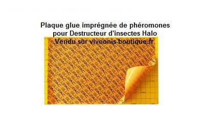 Plaques Glue pour HALO GB011