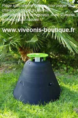 Kit de piègeage du charançon rouge du palmier PALMatrap®