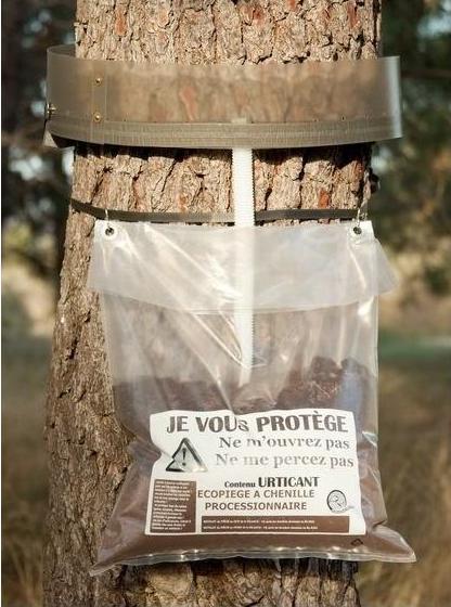 ECOpiège contre chenilles processionnaires du pin Kit La Mésange Verte 100cm